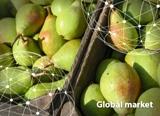 Globalmarketpoire0