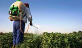 tunisie-pesticides-agri