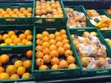 Oranges_Claire Tillier