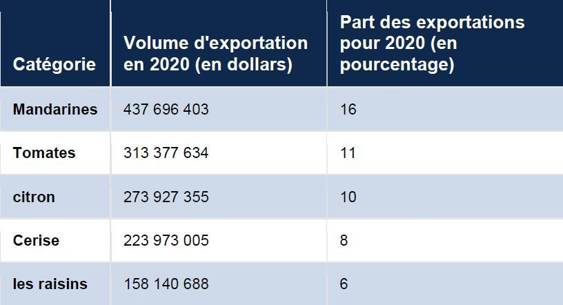 exprtations turques
